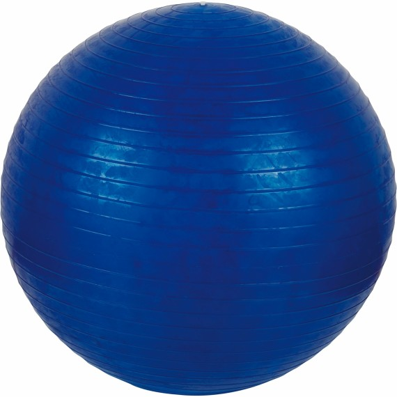 Gymnastik Ball 55cm